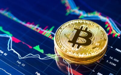 Bitcoin & Cryptocurrency Diploma