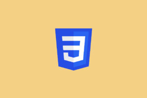 CSS Beginner to Advance