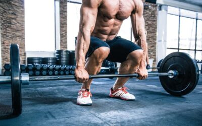 Science-Based Workout: Build Muscle, Lose Fat & Get Fit